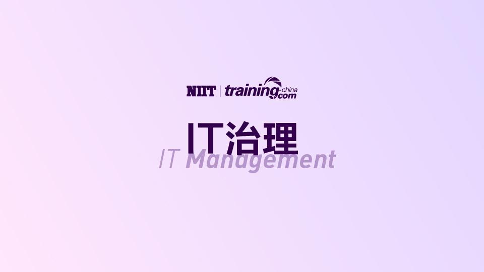 (MTC)IT治理