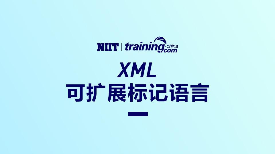 (SLT)可扩展标记语言(XML)-NJ07